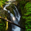 hike to Sol Duc falls