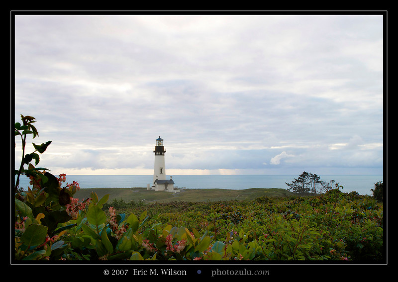 "Yaquina Head lighthouse from a bit up the hill east of it.<br><br><span class=""subcaption"">&nbsp;Merged two photos, one exposed for the foreground and one for the sky. White-balance corrected in DxO from using the B/Y polarizer.</span>"