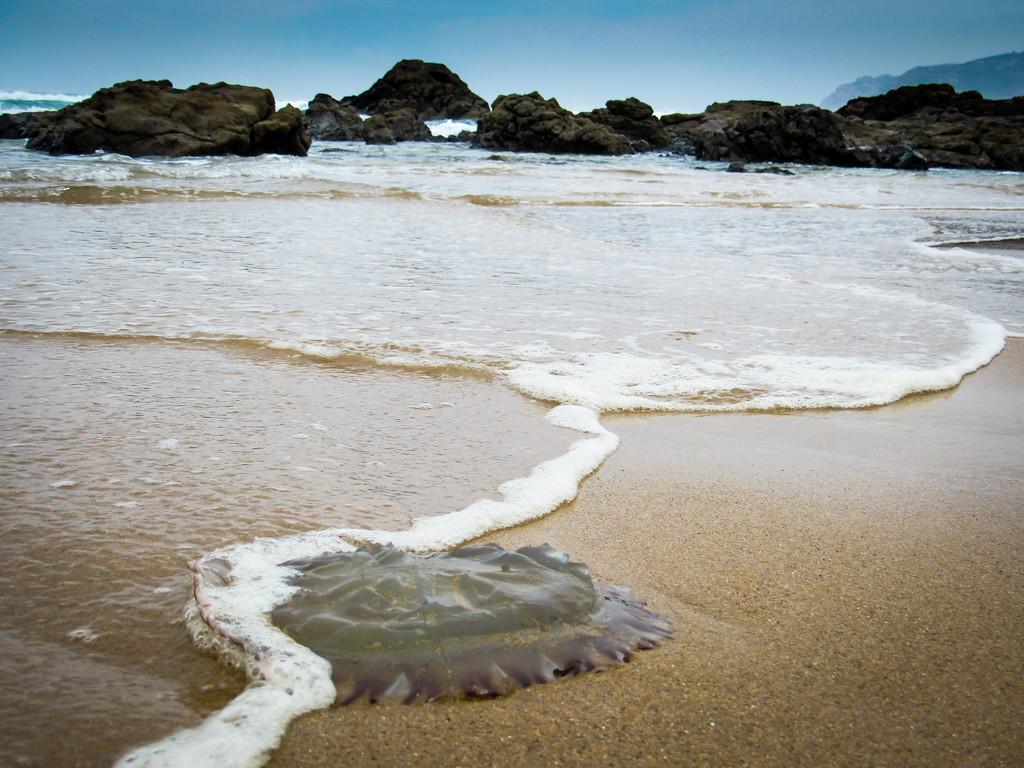 Guincho Beach near Cascais, Portugal