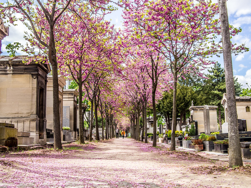 Paris cemetery on Monmartre