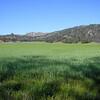 Parkfield, CA