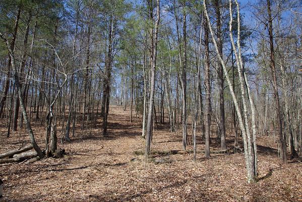 Pat's Land April 2015
