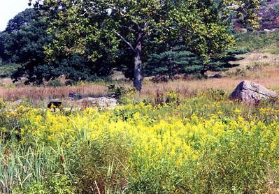Gettysburg_010jpg