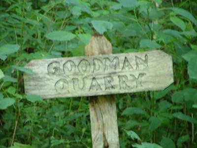 More Goodmans