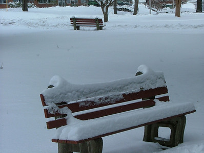 Benches alone
