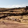 At Sillustani, the pre-Inca burial site near city of Puno