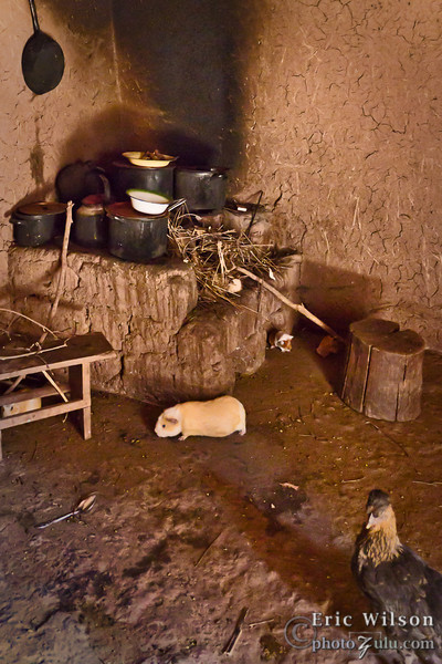 "Typical villager residence.  <br><br><span class=""subcaption"">(The open flame cooking causes soot and smoke to fill the small adobe shack home and the family's meager animals, often guinea pigs and chickens, share the same quarters. There is also very little light (I brightened the photo substantially) in these closed in spaces.)</span>"