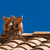 "A pair of cows adorn the rooftops of many homes. <br><br><span class=""subcaption"">(According to tradition, marking a home with such a pair or its variations bring luck, prosperity, and other benefits.)</span>"