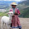 Girl and lama. Colca Canyon area. Peru