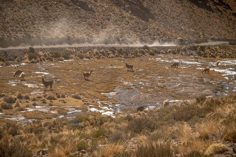 Salt Flats tour-2124.jpg