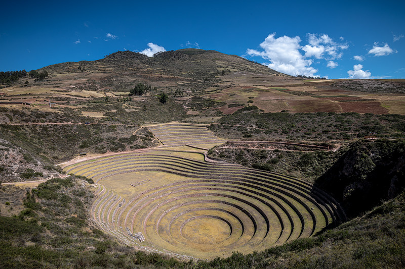 Moray Terraces-31.jpg