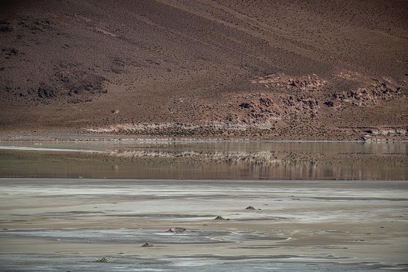 Salt Flats tour - Laguna Capina-2138.jpg