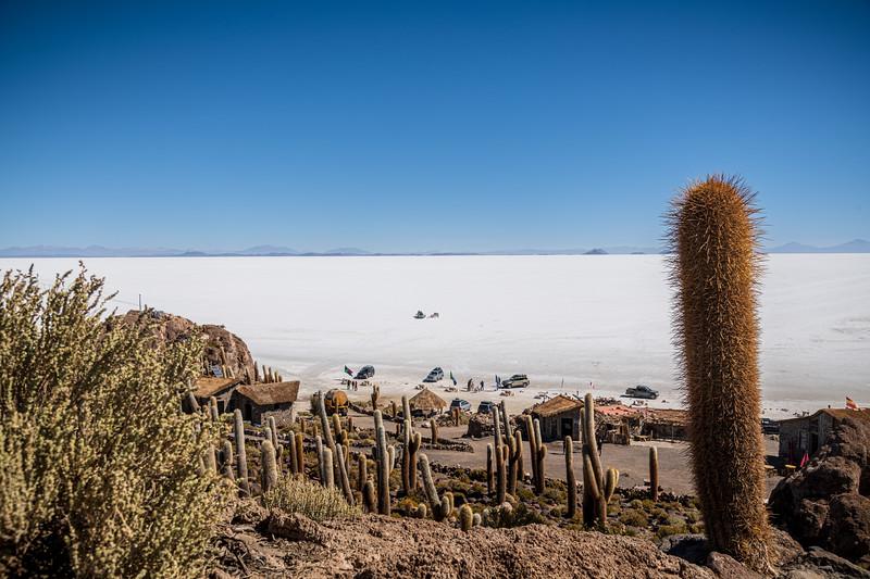 Salt Flats - Isla Incahuasi-3024.jpg