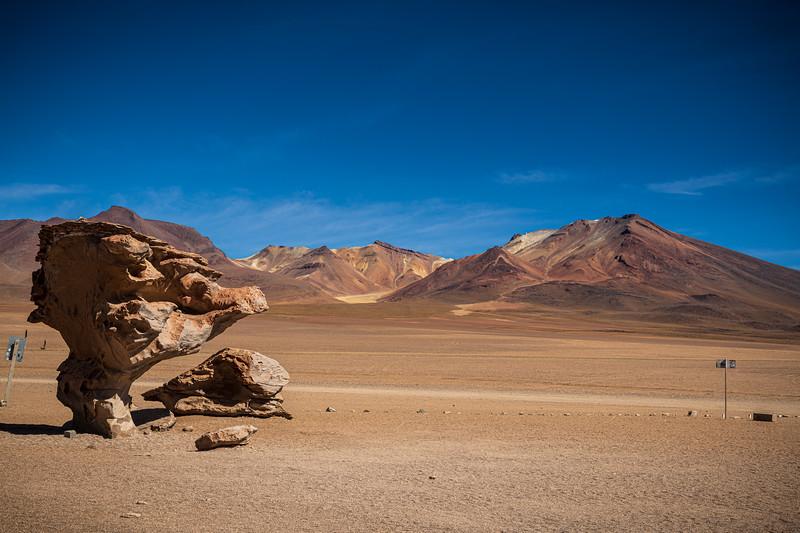 Salt Flats tour - Rock Tree - Arbol de Piedra-2752.jpg