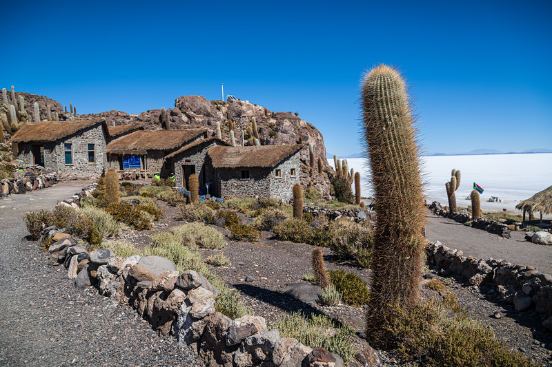 Salt Flats - Isla Incahuasi-3008.jpg