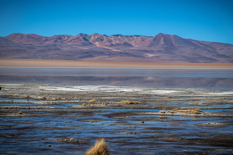 Salt Flats tour - Laguna Chalviri-2186.jpg