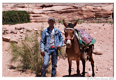 Suleiman: a modern day Bedouin, self-appointed guide, and his mule Monica.