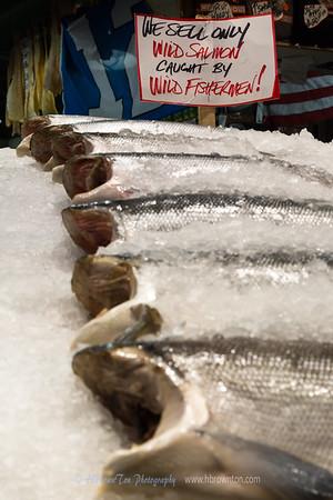 Wild Salmon by Wild Fisherman