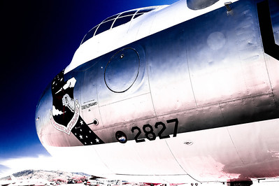 Cold War Kid's Blue Bomber Dream