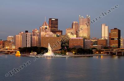 PittsburghDuckAtThePoint