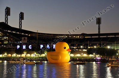 PittsburghDuck08r