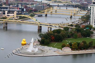 PittsburghDuckAtThePoint01