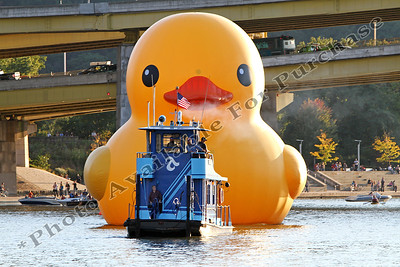 PittsburghDuck03r