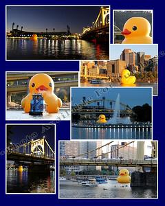 Duck Collage 8x10