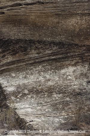 Natural Tapestry B&W _H1R6183