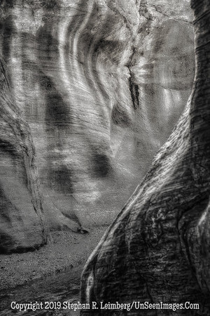 Slot Canyon Mystery _H1R6195