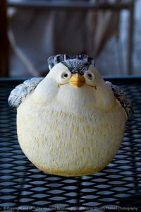 015-ceramic_bird-altoona-01oct13-4499