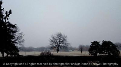 015-tree_fog-ankeny-17jan17-18x10-007-2003-web