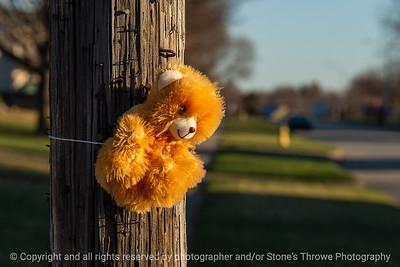 015-toy_bear-ankeny-30mar20-12x08-008-400-6351
