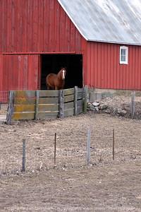 015-horse_barn-audubon_co-12mar05-06x09-009-300-6811