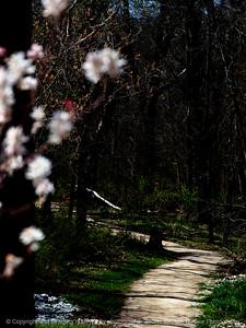 015-trail_footpath-wdsm-11apr16-09x12-201-7501