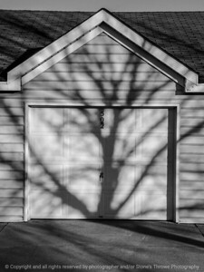 shadow-wdsm-07mar15-09x12-001-bw-2033