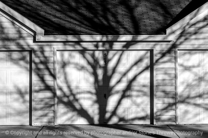 015-shadows-wdsm-25oct14-18x12-bw3-0249