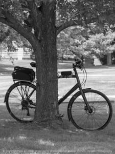 bicycle-wdsm-25jul15-09x12-201bw-4026