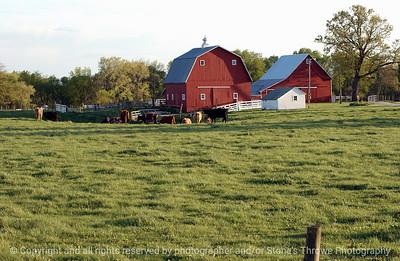 015-barn_n_farm_pasture-dallas_co-25apr05-7057