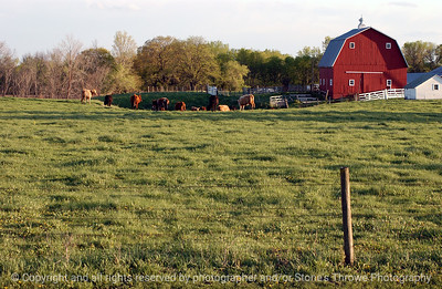 015-barn_n_farm_pasture-dallas_co-25apr05-7056