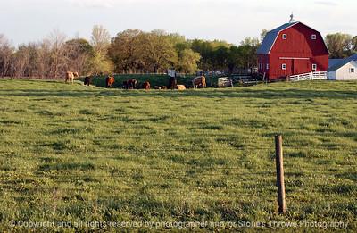 015-barn_n_farm_pasture-dallas_co-25apr05-7056