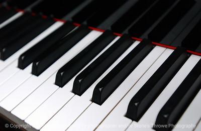 015-piano-dsm-30jan06-9121