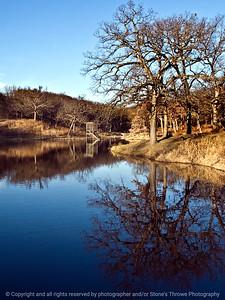 015-tree_reflection-dsm-28nov11-001-2352