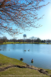 015-park_pond-ankeny-23apr18-08x12-007-4006