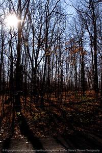 015-forest_landscape-rockford_ill-17nov11-2070