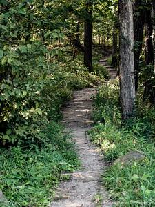 hiking_trail-ledges-01sep15-09x12-001-4792
