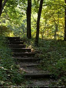 hiking_trail-ledges-01sep15-09x12-001-4795