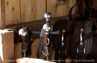 015-horse_harness-urbandale-05jul05-0334