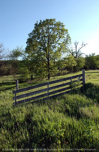 015-farm_gate_&_tree-madison_co-23may05-7562