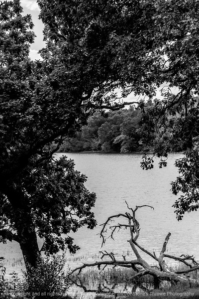 015-landscape-wdsm-08sep14-12x18-bw-9540